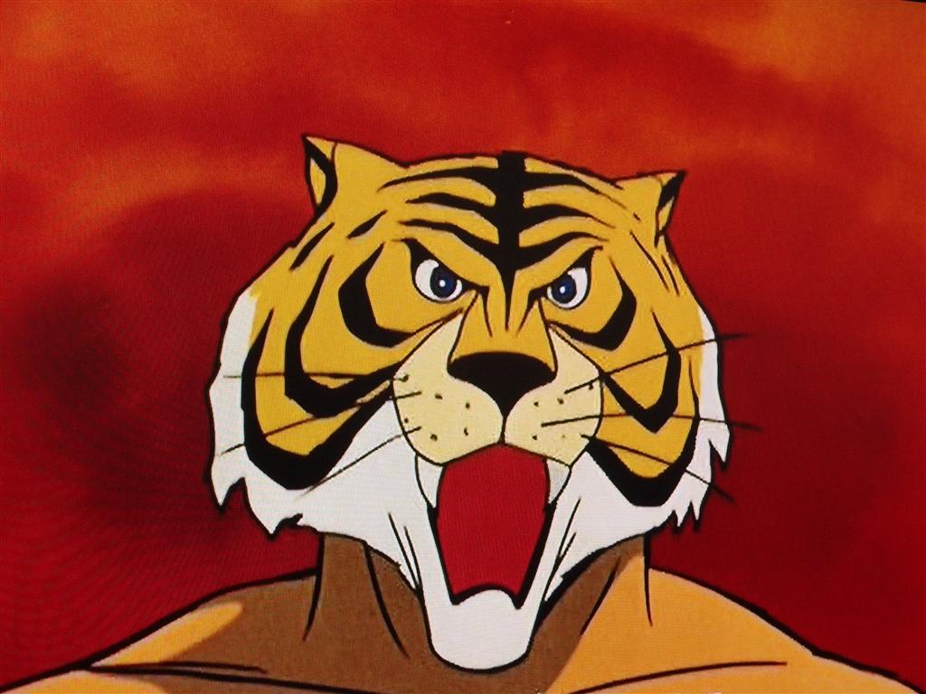 タイガーマスクの画像 p1_25